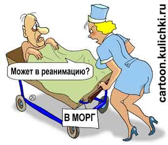 Стоматологическая поликлиника спб у. бульвар красных зорь