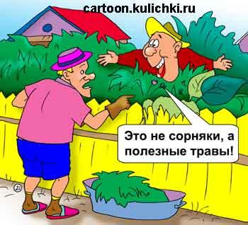 http://cartoon.kulichki.com/nature/image/nature083.jpg